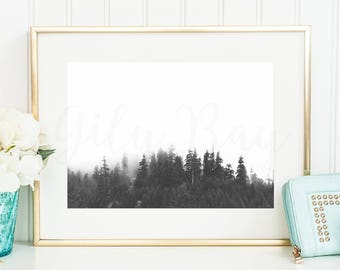 FOREST& FOG 2 Printable Digital Art Instant Download Print scandinavian forest landscape pine trees personal use