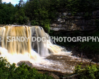 Blackwater Falls Waterfall, Blackwater Falls State Park, West Virginia, Nature Photography, Nature Decor