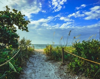 Pathway to a Beach Paradise