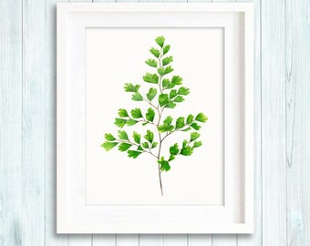 Maidernhair Fern watercolour painting, botanical painting, leaves print, green home decor, spring art, leaf painting