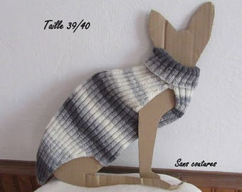 pullover in the grey tones for a big grown-up cat sphynx