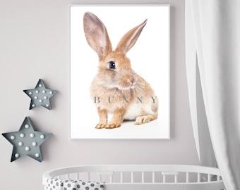 Bunny Nursery Wall Art