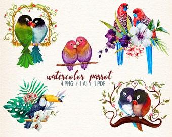 watercolor parrot, bird, parrot clipart, parrot vector clipart, tropical bird, love birds