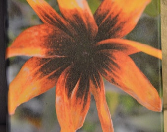 8x8 Flower canvas