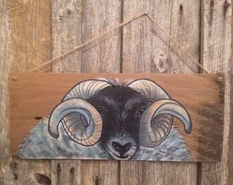 Ram, hand painted on wooden shingle, sheep, highland, scotland.