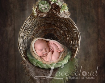 Newborn digital background  digital backdrop  Newborn Backdrop  prop - newborn / Digital Photography / 102