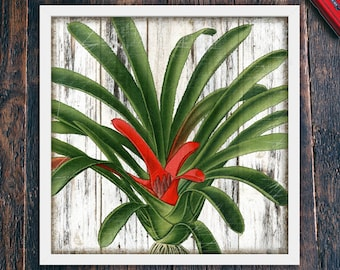 Tropical Plant Wall Art, Printable Rustic Wall Decor Beach, Red Flower, Large Square Home Decor, Living Room Art, Instant Download (#4095c)
