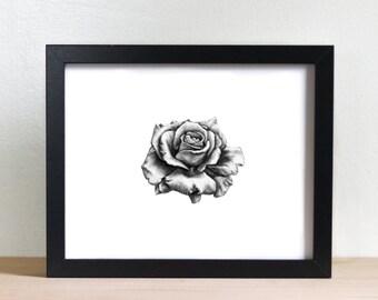 Rose- beauty- petals- flower- illustration- charcoal drawing- fine art- wall art