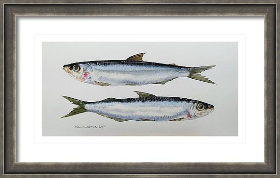 """TWO MINNOWS - Original 6"""" x 12"""" Oil Painting on Paper"""