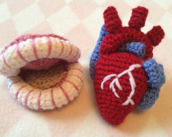 Crocheted Anatomy Set, Heart and Teeth