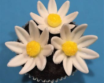 40 Daisy Edible Cake or Cupcake Toppers