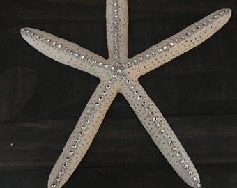 Decorative Starfish- Large