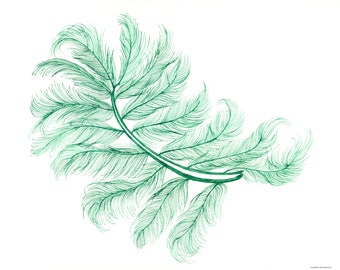 Green Feather Digital Download Ink