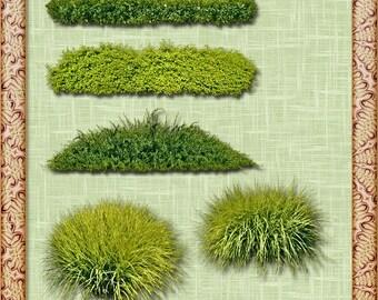 Grass Clipart, Grass Clip Art, Clipart Grass, Clip Art Grass, Grass PNG, PNG Grass, Grasses Clipart, Grasses Clip Art, Clipart Grasses
