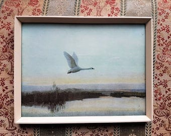 Vintage Swan Print, Green Symphony, Vernon Ward