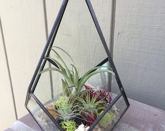 Glass Geometric Diamond Terrarium with Air Plants, KIT to make terrarium, DIY kit to make your own terrarium, air plants, terrarium