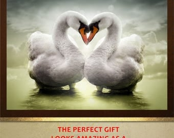 Love Swans poster print Wall Art in 4 sizes