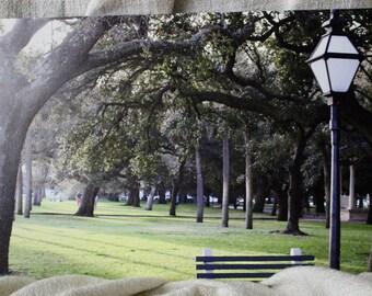 Park Bench Canvas