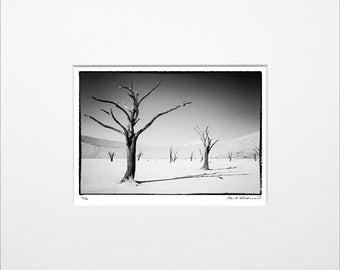 "Danilo Böhme ""Deadvlei"", Schwarzweiß-Fotografie, FineArt Print im Passepartout, Original, Vintage Print, Limitiert, Handsigniert"