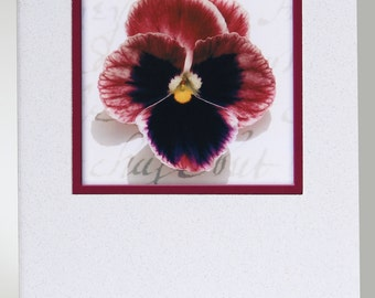 Pack of 5 A6 Handmade Photographic Blank Floral Greetings Cards (Pack G)