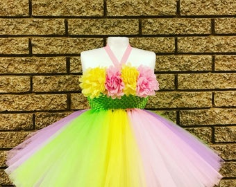 First Birthday outfit girl, cake smash girl dress, rainbow dress, girl dress