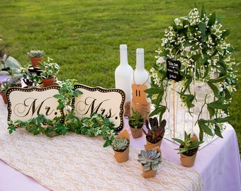 """75 Succulents in 2"""" black pots & carrier tray perfect for wedding favors"""