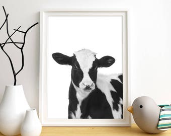 Baby Calf Print, Animal Wall Art, Farm Animal Art, Cow Art Print, Black & White Art Print, Instant Digital Download, Nursery Wall Art Print,