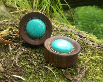 Double flared plug turquoise gem wood 32mm