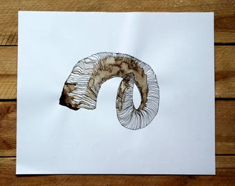 "Original drawing ""Horn"" / nature / Moor lye"