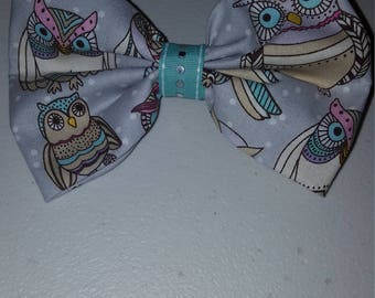 Large Owl with teal ribbon