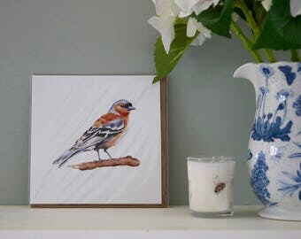Chaffinch watercolour greetings card