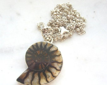 40% SALE Moroccan Ammonite Fossil Pendant.  Brown and Ivory.  18 Inch Sterling Silver Chain. Fossil Necklace.