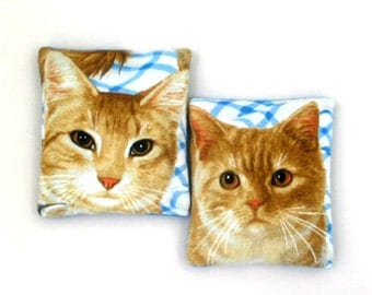 Two Larger Catnip Filled Cat Toys Ginger Tabby Cats