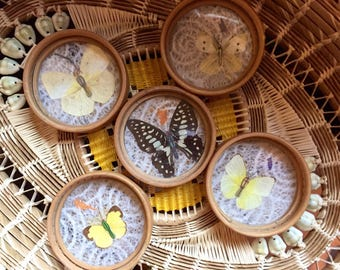Vtg 70s Pressed Butterfly Coaster Set