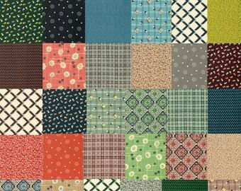 Winter Walk Collection - From Denyse Schmidt - Fat Quarter Set - 30 SKU's - 86.99 Dollars