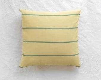 Indoor / Outdoor Canvas Pillow