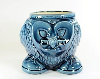 Wise Owl Planter African Violet Pot Blue