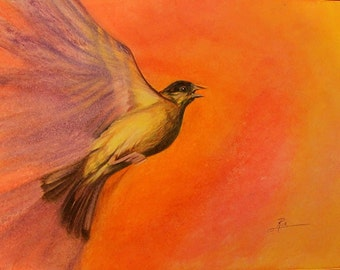 Flying Bird - Fine Art Print