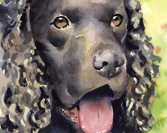 American Water Spaniel Art Print Signed by Artist DJ Rogers