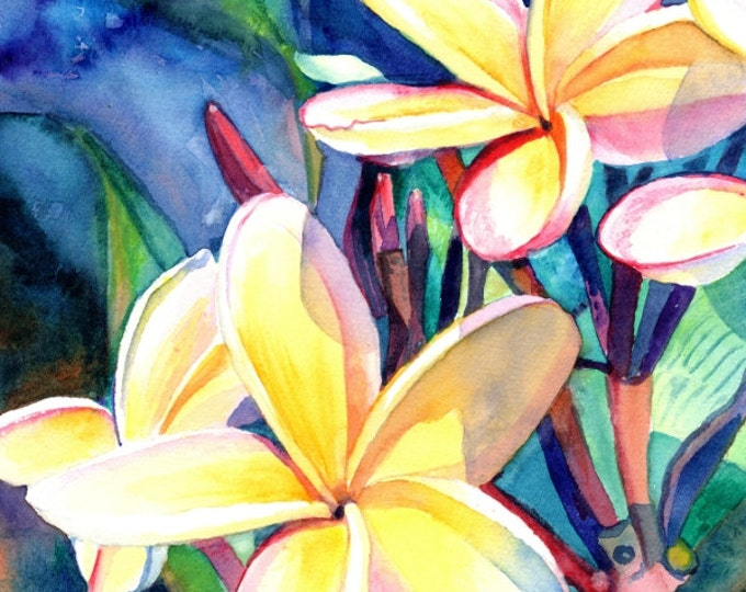 Plumeria Watercolors,  Tropical Flowers, Frangipani Art, Kauai Fine Art, Original Plumeria Paintings,  Hawaiian Flowers, Hawaii Decor