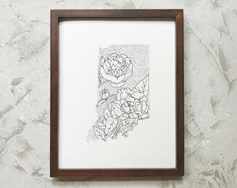 Indiana> Peony> State Flower Drawing> Giclee Print