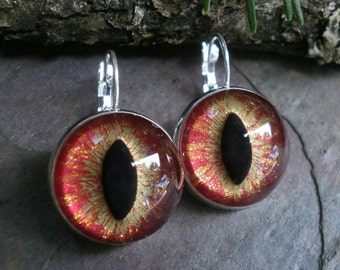 Gothic Steampunk Silver Flame Eye Lever Back Earrings in Silver Plate