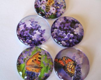 Lavender, Butterflies and Bees Themed Round Glass Magnets Set of 5