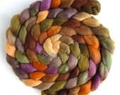 Polwarth/Silk Roving - Handpainted Spinning or Felting Fiber, Morning Fenceline