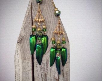 Brass and beetle wing chandelier earrings