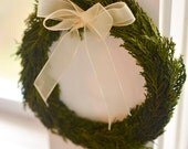 Preserved Mini Cypress Wreath, small Christmas wreath, mini holiday wreath, mini wreath