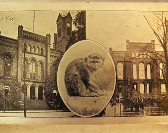 Vintage antique tin picture, tin type, souvenir of city hall fire, monkey, unusual, historical collectible, photograph