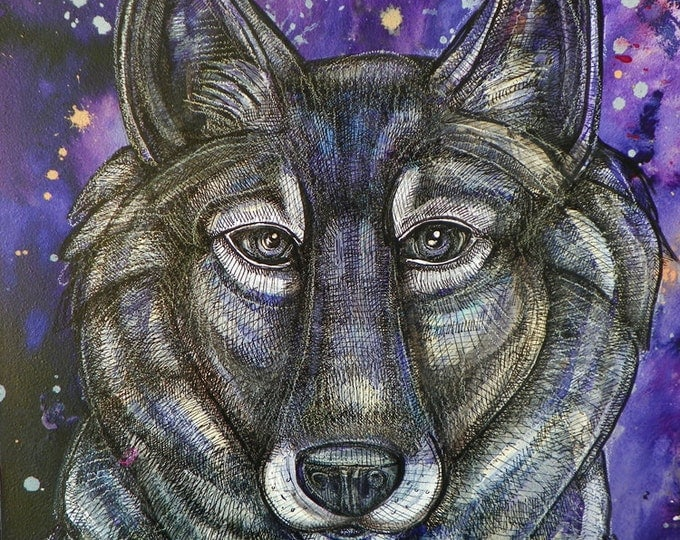 Gray Wolf Art Print by Lynnette Shelley