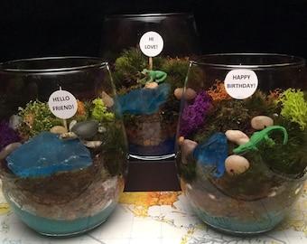 Moss Terrarium, Great for Low light, office, CHOOSE:  Turtle, Frog or Alligator  DESKTOP BUDDY