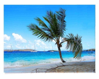 Art Created from Photography taken in the Virgin Islands
